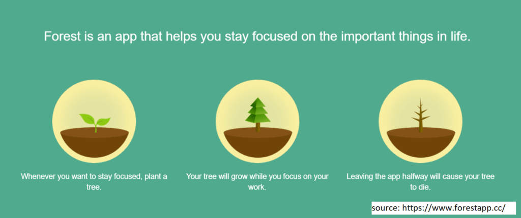 Forest  Productivity Tracker
