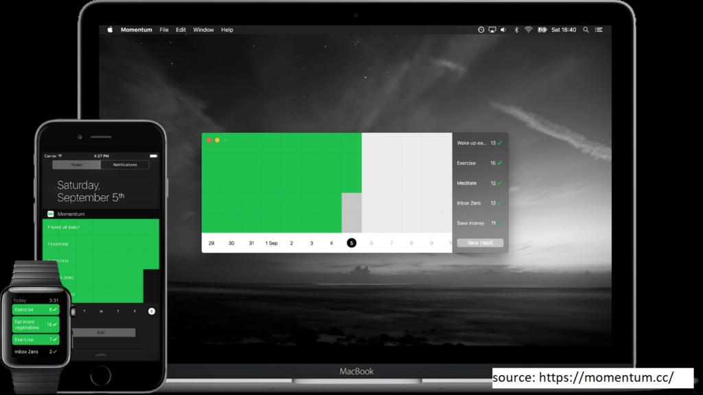 Momentum Productivity Tracker